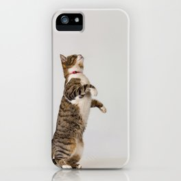 active cat playing iPhone Case