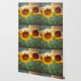 favorite sunset view Wallpaper
