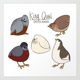 King Quail Art Print