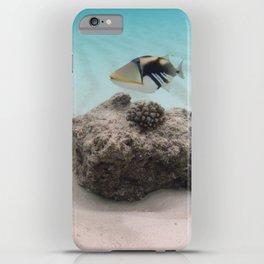Tropical Maldives White Sand Lagoon Coral Fish iPhone Case