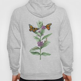 Monarch Butterfly Life Cycle Hoody