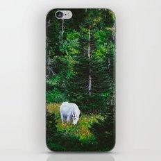 Mountain Man iPhone & iPod Skin