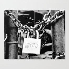 American lock Canvas Print