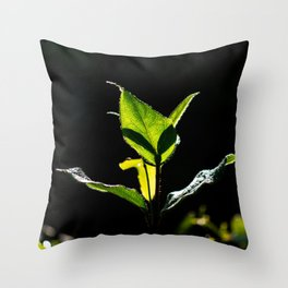 Green on black Throw Pillow