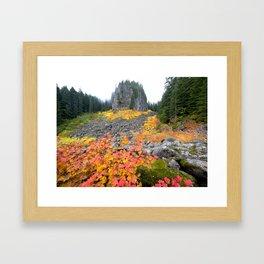 Table Rock Wilderness Landscape Framed Art Print