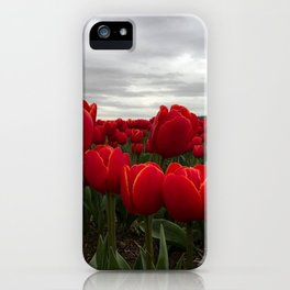 Red Tulips with silver-gray sky iPhone Case