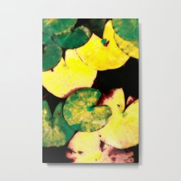 Water lily leaves Metal Print
