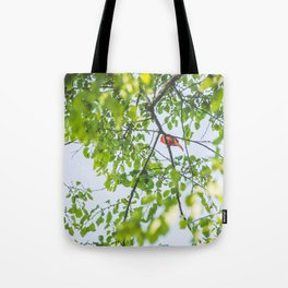 Song from Above Tote Bag