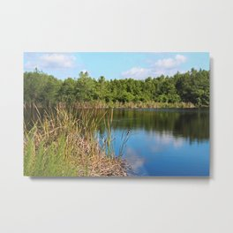 Gator Lake III Metal Print