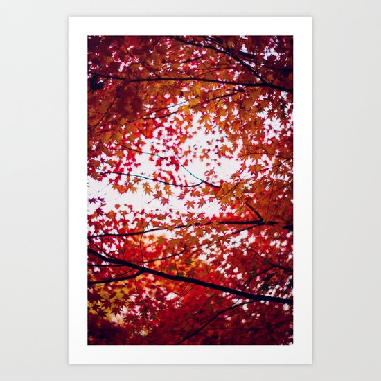 up in the trees you'll find peace Art Print