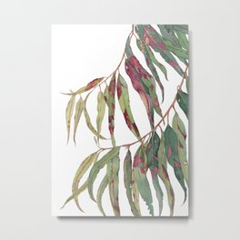 A touch of red - watercolour of eucalyptus branch Metal Print