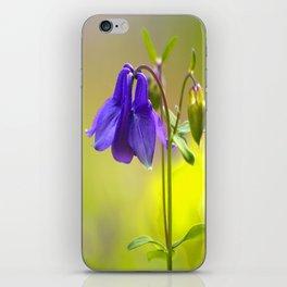 Purple Columbine In Spring Mood iPhone Skin