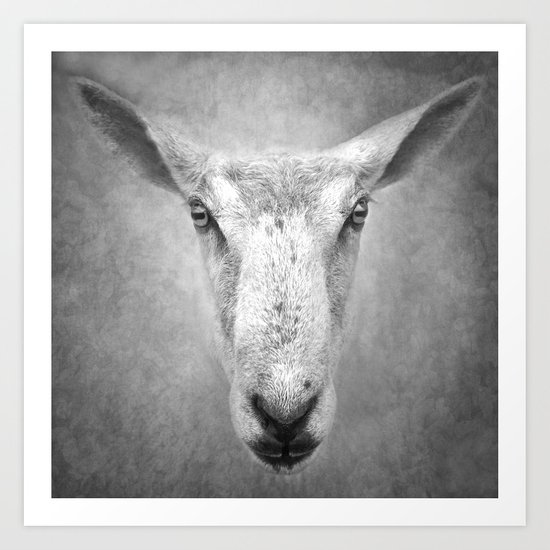 What are sheep thinking when they look at you...? Art Print