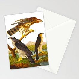 Goshawk Bird Stationery Cards