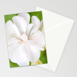 White Flowers | Flower | Floral | Nadia Bonello Stationery Cards