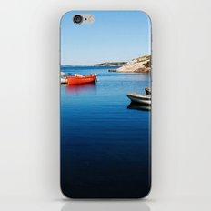 Cove iPhone & iPod Skin