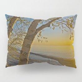 A Birch tree sunset Pillow Sham