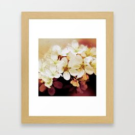 Blossom 06-18 Framed Art Print