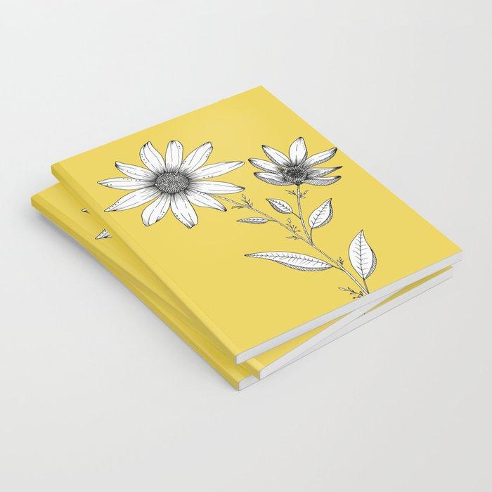 Wildflower line drawing | Botanical Art Notebook