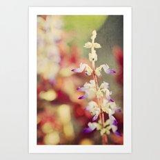 Autumn garden Art Print
