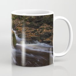 Falls at Ricketts Glen Coffee Mug