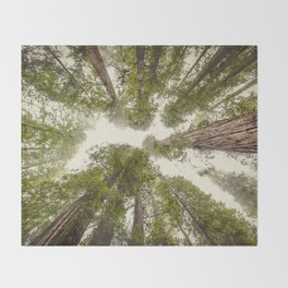 Into the Mist - Nature Photography Throw Blanket