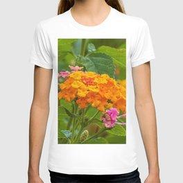Lantana T-shirt