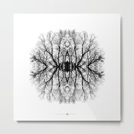 Scary trees are scary Metal Print