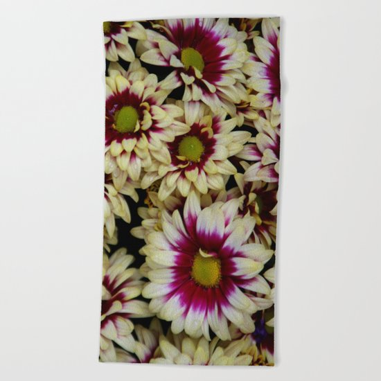 Multi color daisies! Beach Towel