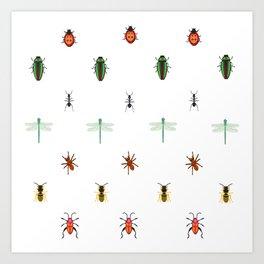 Insectes Art Print