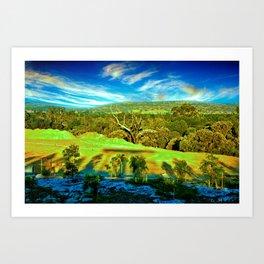 Bushland Landscape in Perth Western Australia Art Print