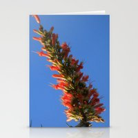 hook Stationery Cards featuring Ocotillo Hook by Mae2Designs