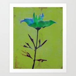Flowers or Stars Art Print