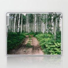 Aspen Trees Laptop & iPad Skin