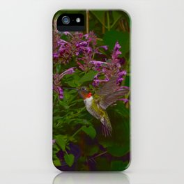 Male ruby-throated hummingbird and agastache 45 iPhone Case
