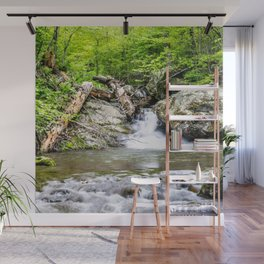 Natural Meditation Wall Mural