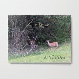 As The Deer...  Metal Print