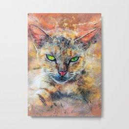 Cat Toby Metal Print
