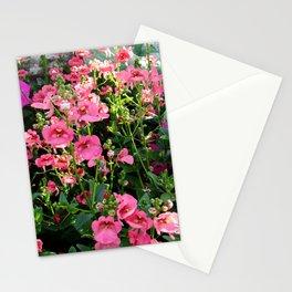 Diascia Stationery Cards