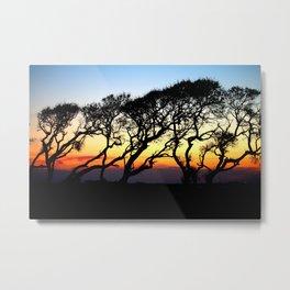 Sunset Through The Oaks Metal Print