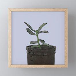 The Plant Bianca Watered Framed Mini Art Print
