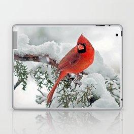 Cardinal on Snowy Branch (sq) Laptop & iPad Skin