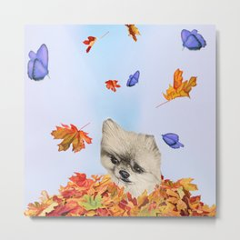 Pomeranian Pawtumn Love Metal Print