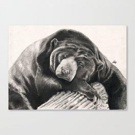 Lullaby... Canvas Print