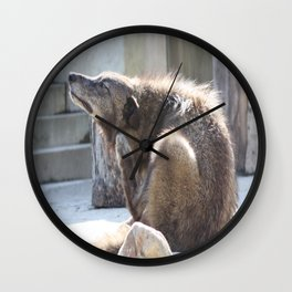 Get that itch! Wall Clock