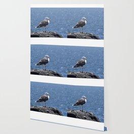Seagull overlooking the ocean Wallpaper