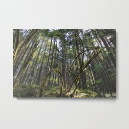 Nature's Claw Metal Print