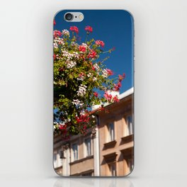 Pink and red Ivy leaved geranium iPhone Skin