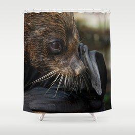 Fur Seal Shower Curtain