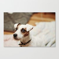 jack Canvas Prints featuring jack by vaughan granberg